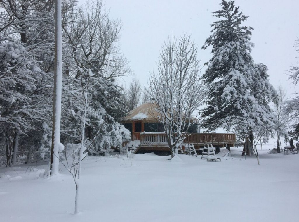 A yurt with a large deck on the side of it. It is surrounded by tall trees and a yard. Everything is covered in snow and the sky is gray.