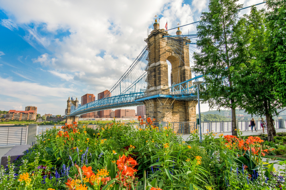 Looking out at a bridge crossing the river. The bridge is stone with blue railings and wires. You can see the river and a city skyline across the river. In front of the bridge is big garden with yellow, red, orange, and purple flowers.