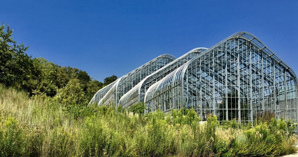 Looking at the large conservatories at the Lauritzen Gardens. There is also tall grasses and trees surrounding the conservatory.