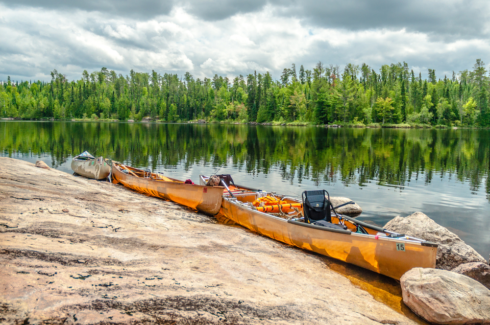 2 Yellow canoes set alongside shoreline with calm water and evergreen trees in background.