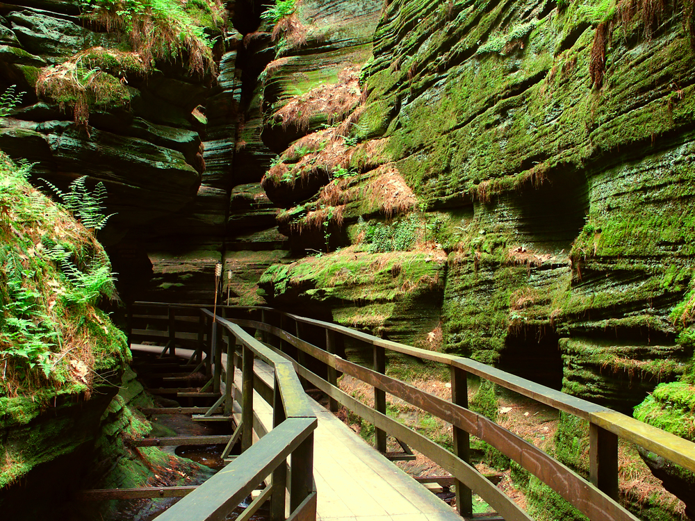 A narrow rock canyon with a small wooden walkway running through it. The rocks in the canyon are covered in green moss and ferns.